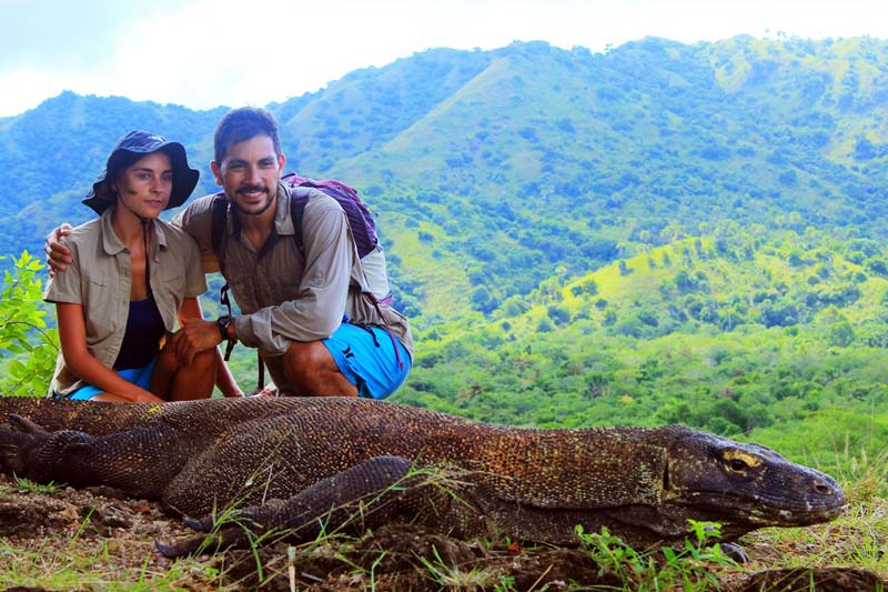 Into the wild with Komodo Dragon