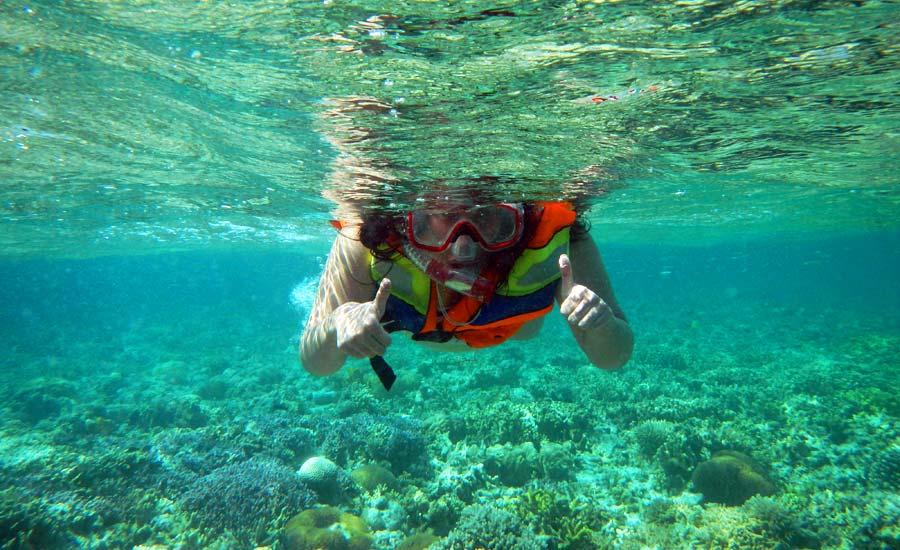 Menikmati Bawah Laut Bali di PulauMenjangan