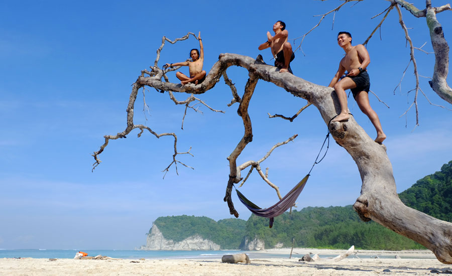 Pohon Instagram Pantai Tarimbang, RiwayatmuKini…